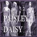 Paisley daisy logo 2014 silver
